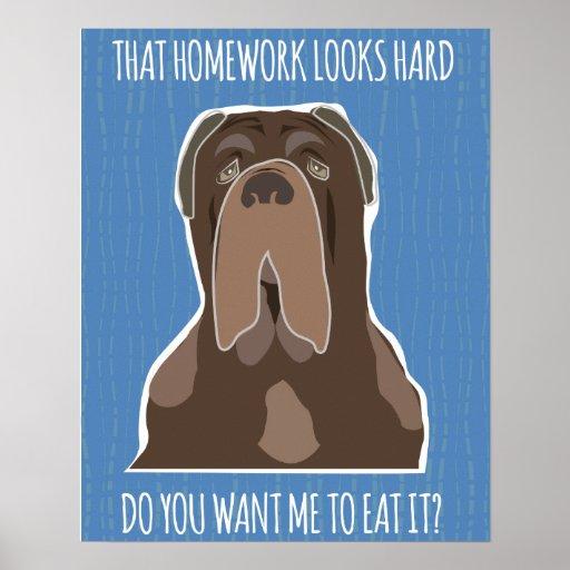 Funny Homework Meme Poster