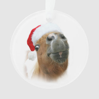 Funny horse Christmas