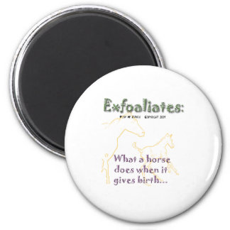 Funny Horse:  Exfoaliate Magnet