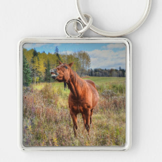 Funny Horse-lover's Sorrel Mare Equine Photo Ranch Key Chains