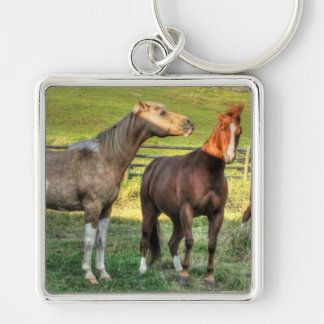 Funny Horse-lover's Sorrel Mare & Pinto Stallion Key Chains