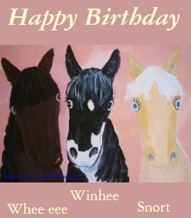 Funny Horses Cards Customize