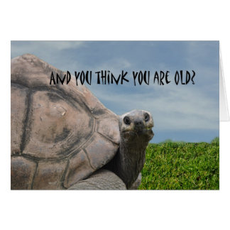 Funny Humorous Giant Sea Turtle Happy Birthday Greeting Card