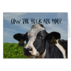 Funny Humourous Cow I Miss You Card