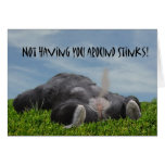 Funny Humourous Monkey Miss You Greeting Card
