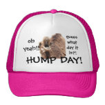 Funny Hump Day Camel Baseball Cap, Oh Yeah!! Cap
