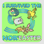 Funny I Survived the Nor'Easter