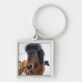 Funny Icelandic Horse Portrait Key Ring
