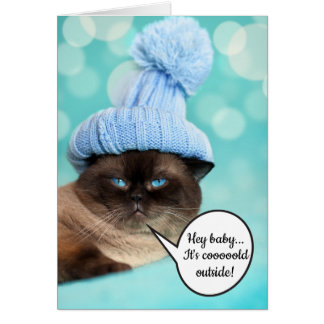 Funny innuendo sexy pose cat Christmas Card