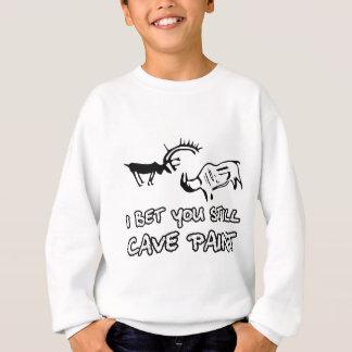 Funny insult sweatshirt