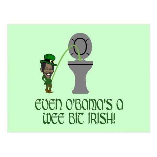 Funny Irish Obama Post Cards