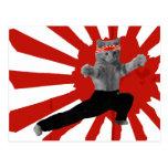 Funny Karate Kitten gifts Postcard