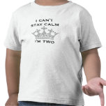 Funny Kid's 2nd Birthday I Can't Stay Calm I'm Two