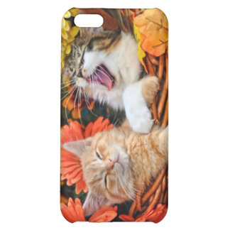 Funny Kitty Cat Yawning Kittens in Love Gerberas iPhone 5C Cases