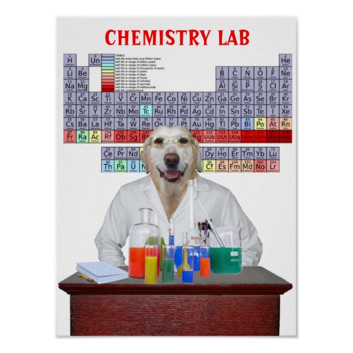 Funny Lab Chemistry Poster for Teachers