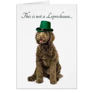 Funny Labradoodle Leprechaun Card