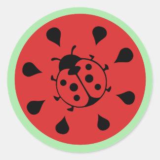 Funny Ladybug and Watermelon Sticker