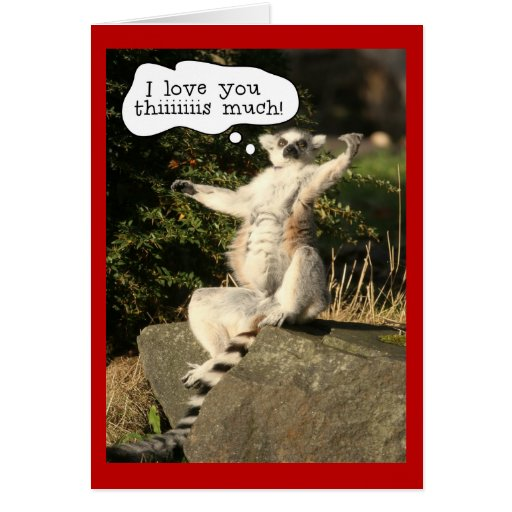 Funny Lemur Love You This Much Valentines Day Cards