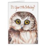 Funny-Little Owl, 29th Birthday