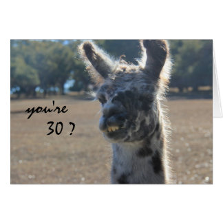 Funny Llama Birthday, 30th, Over the Hill Card