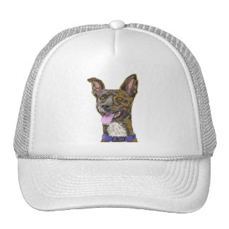 Funny Looking Colorful Sketched Dog with Big Ears Cap
