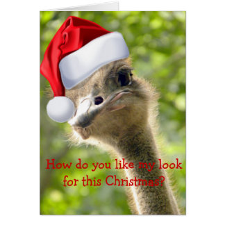 Funny Looking Ostrich Santa Custom Holiday Card