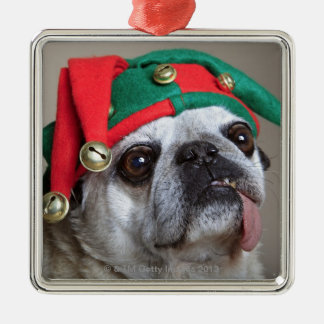 Funny looking pug with tongue hanging out christmas ornament