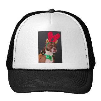 Funny looking reindeer mesh hats