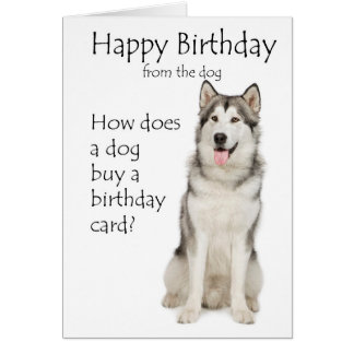 Funny Malamute Birthday Card