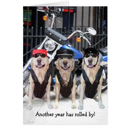 Funny Male Biker Lab Greeting Cards