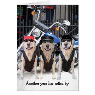 Funny Male Biker Lab Cards