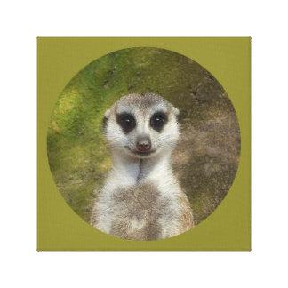 Funny Meerkat 002 02.2 rd Canvas Print