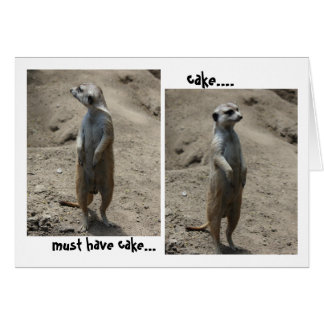 Funny Meerkat Birthday card; must have cake! Card