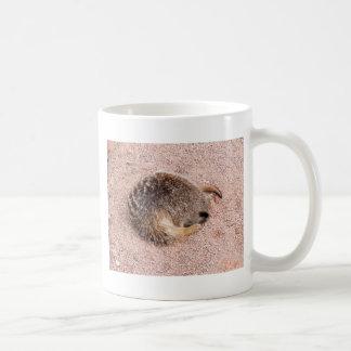 Funny Meerkat Basic White Mug