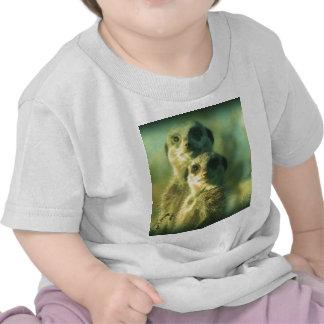 Funny meerkats t shirts
