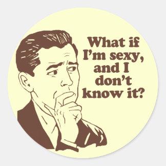 Funny Mens Retro Style Humor Round Sticker