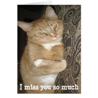 Funny missing you greeting card cat hug