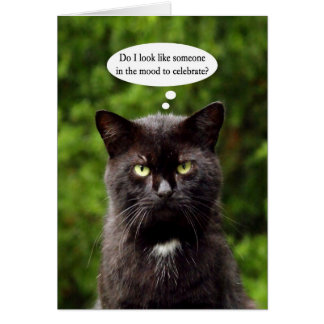 Funny Moody Black Cat birthday card