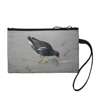 Funny Moorhen Take a Bow Bagettes Bag