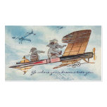 Funny Motivational Speaker Pilot Travel  Two-Sided Pack Of Standard Business Cards
