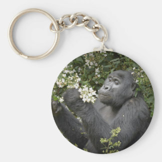 funny mountain gorilla eating flowers key chain