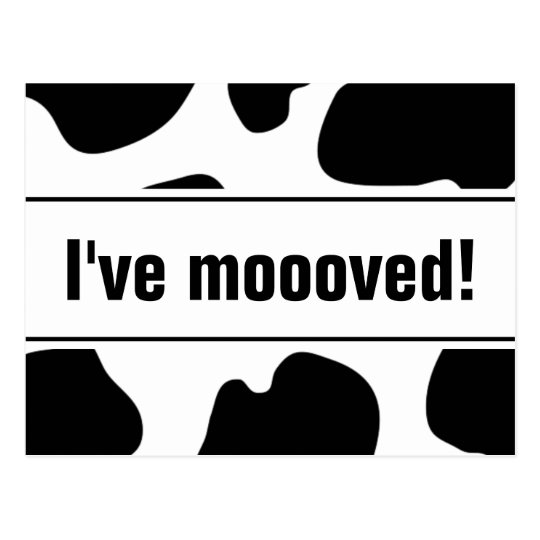 Funny moving postcards with cow print   i've