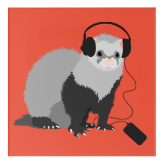 Funny Music Lover Ferret Acrylic Wall Art