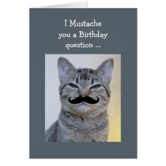 Funny  Mustache Question Birthday Cat Greeting Card