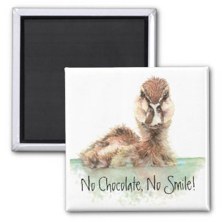 Funny, No Chocolate, No Smile, Angry Duck, Bird Magnet