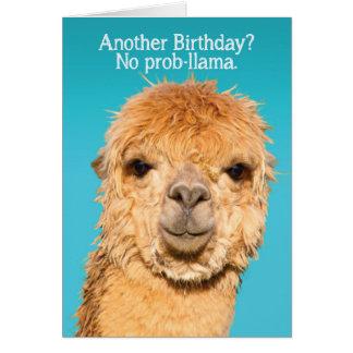 Funny No Problama Llama Birthday Wisdom Greeting Card