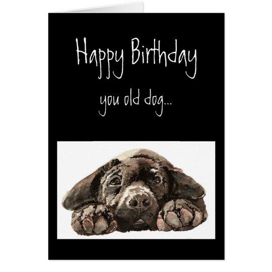 Funny Old Dog Birthday, Labrador Retriever Card