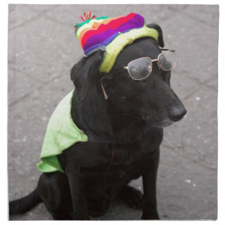Funny old dog wearing hat and glasses cloth napkins