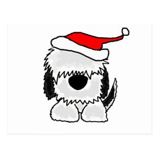 Funny Old English Sheepdog in Santa Hat Postcard