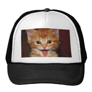 Funny Orange kitty face Cap